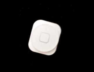 Home Button weiss für iPhone 5