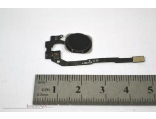 Home Button mit Flex und Fingersensor, schwarz für iPhone 5S