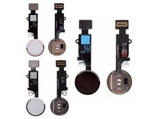 Home Button mit Flex und Fingersensor für iPhone 8/8+